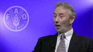 FAO expert on Voluntary Guidelines and the private sector