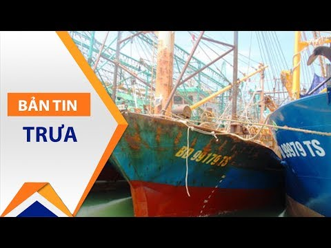 Sốc: Ngư dân học luật về kiện DN đóng tàu? | VTC1 - Thời lượng: 58 giây.
