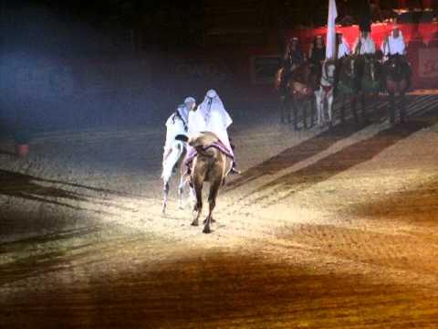 Egy teve �s egy arab l� k�z�s d�jlovas k�rje