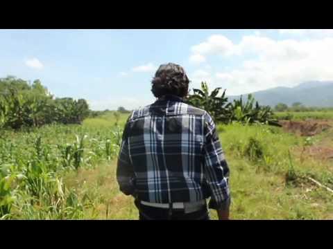 La Vida en Honduras (Cultura Profética - Le da Igual)