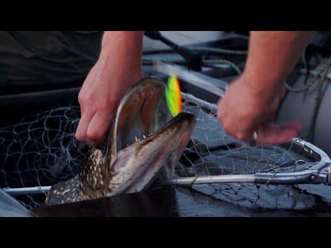 особенности псковской рыбалки youtube