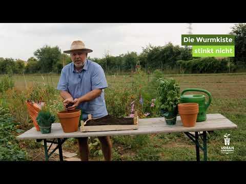 Wurmkompostierung - Warum mit Regenwürmern?