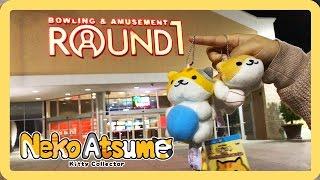 ROUND ONE Wins! Neko Atsume!! - KKS VLOG