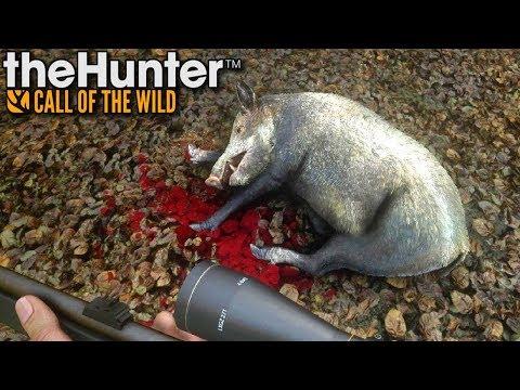 Stado dzików | theHunter: Call of the Wild (#24)