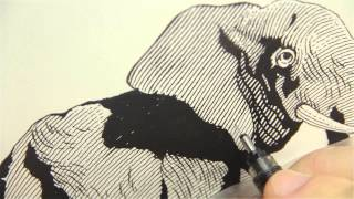 Scratchboard Drawing of and Elephant