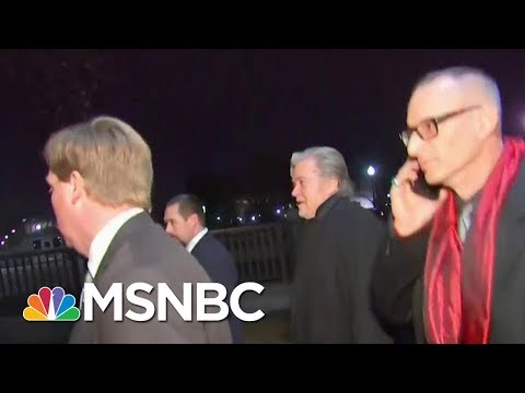 Steve Bannon Plans To Cooperate With Special Sounsel | Morning Joe | MSNBC