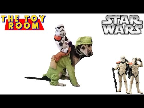 Sparky Wearing Star Wars Sandtrooper & Dewback Halloween Costume