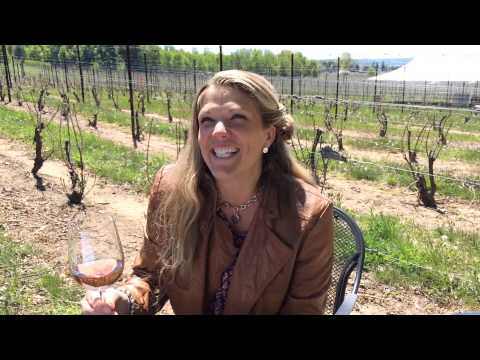 Bowers Harbor Vineyards in MLive's search for Michigan's Best winery