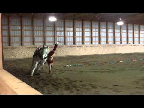 trick riding 156