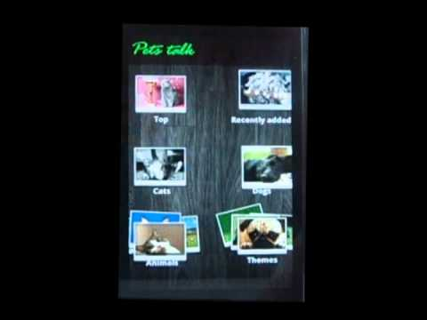 Video of Pets talk