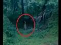 foto Penampakan Hantu Terjelas  hutan angker Borwap
