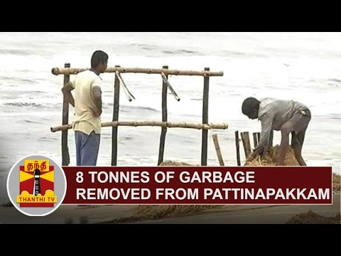 8-Tonnes-of-Garbage-removed-from-Pattinapakkam-Beach-Area-in-24-Hours-Thanthi-TV