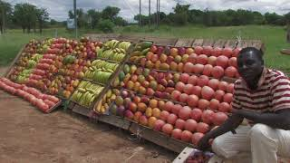 Tzaneen South Africa  city photos : Tzaneen and Surroundings - South Africa Travel Channel 24