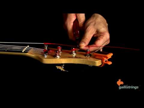 How to Change Your Electric Bass Strings - Giorgio Santisi