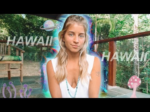 i took a trip... (episode 6)