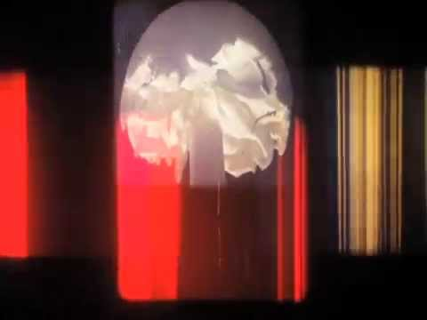 The Films of Rose Kallal