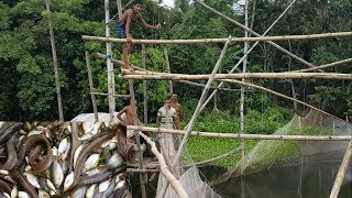This is really very oldest system to catch fish in Bangladesh rural village. They put very big net with some big Bamboo help and every 2030 minutes they just pull out the net by using bamboo and collect the fish under big net. Most of the time they got local Bangladeshi country fish. Please like share and comments to support our work and show world how Bangladeshi peoples do everything. thanks.