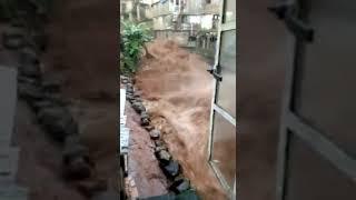 Video Heavy Rains Leave Many Dead and Homeless in Sierra Leone MP3, 3GP, MP4, WEBM, AVI, FLV Agustus 2017