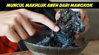 Video EKSPERIMEN BAKING SODA - BLACKFIRE SNAKE MP3, 3GP, MP4, WEBM, AVI, FLV Juni 2019