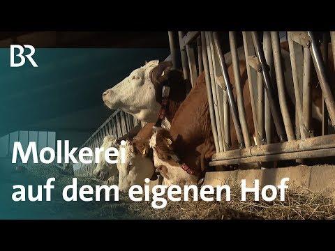 Selbstvermarktung in der Landwirtschaft: Milchbauer mit ...