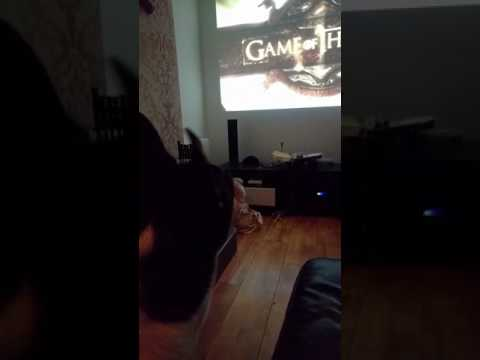 Dog Singing Game Of Thrones Theme Tune Feat. Toby_mctobyface
