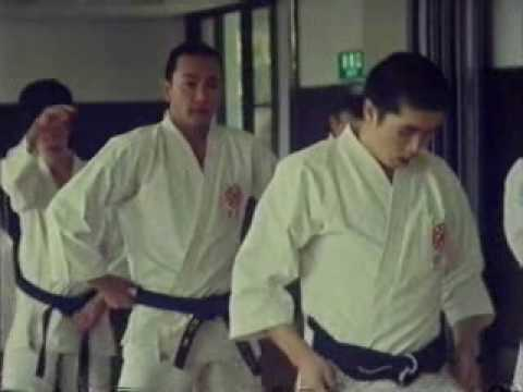 Way of the Warrior - Shorinji Kempo, the New Way