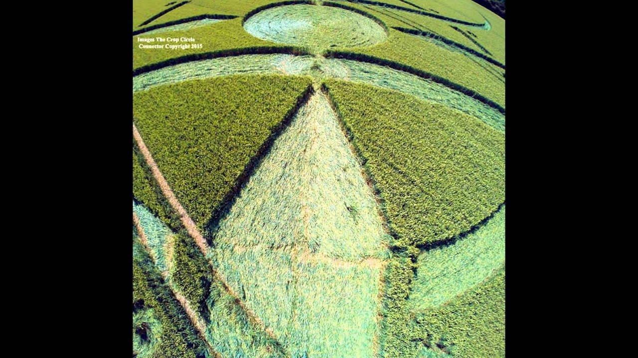 Смотреть онлайн: Рисунки на полях. Англия. Уилтшир. 6 июля 2015г