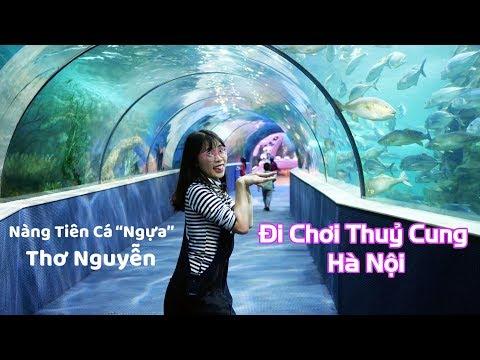 Đi Chơi Giữa Lòng Đại Dương Ở Thuỷ Cung Time City Hà Nội - Thời lượng: 20:30.
