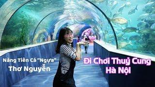 Video Đi Chơi Giữa Lòng Đại Dương Ở Thuỷ Cung Time City Hà Nội MP3, 3GP, MP4, WEBM, AVI, FLV Juli 2018