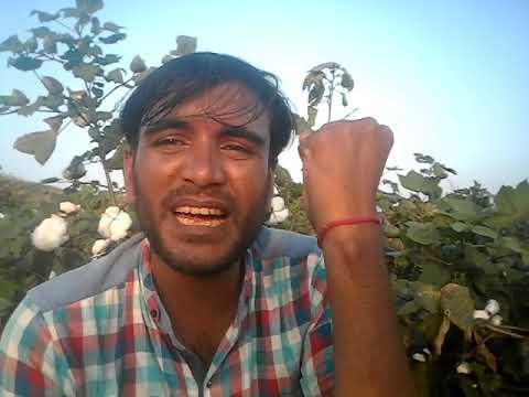 Video टकलो ससुर मिठडी // निमाडी कामेडी // Nimadi Comedy Raja // satish hemraj download in MP3, 3GP, MP4, WEBM, AVI, FLV January 2017