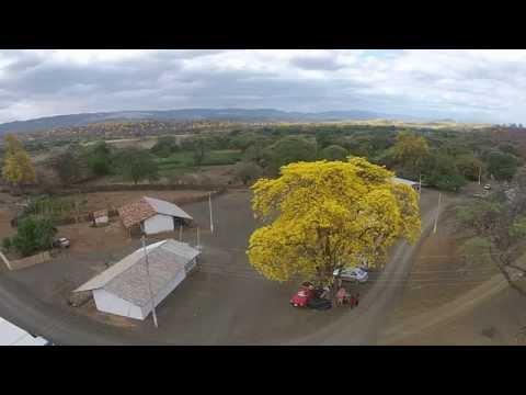 , title : 'Florecimiento de los Guayacanes 2015 -Cazaderos, Loja, Ecuador'