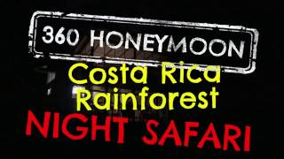 Halloween Night Safari in the Costa Rica Rainforest
