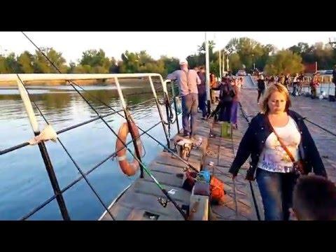 правила рыбалка в ростове на дону видео