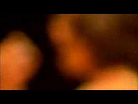 Tekst piosenki Incubus - Nebula po polsku