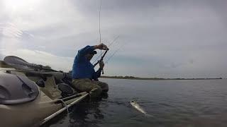 Aransas Pass (TX) United States  city photo : Aransas Pass Kayak Fishing - Potlicking Redfish on Topwater and Crank