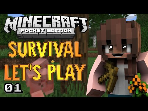 Survival Let's Play Ep. 1 - Getting Started! - Minecraft PE (Pocket Edition)