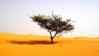 Repentance 7/7-The Story Of Ka'ab ibn Malik cont.-Abu Mussab Wajdi