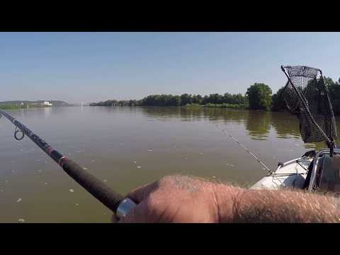 Ohio Rive Catfishing: Free Drifting For Blue Cats
