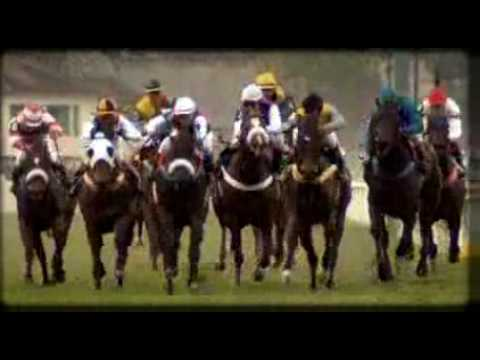 Horse Racing in Brazil