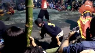 Samboyo Putro Terbaru, Pentulan Dadi, Ganas Video