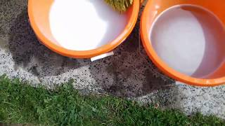 """The 2 Bucket Method for Car Cleaning Tested. In short yes it does work. The """"Rinse"""" Bucket does get pretty dirty even on my already relatively clean car, so that means that a lot of grime and dirt could potentially be rubbed into the paint using the 1 bucket method. Tested so you dont have to!CHOOSE SUBSCRIBE AND SHARE!! DONATE TO KEEP THE CONTENT COMING!!☠ My Twitter https://twitter.com/TCOPasta☠ Instagram https://www.instagram.com/thecreepiestofpasta/?hl=en☠ Email for business and Media Enquiries onemanmade@gmail.com☠ DONATE VIA PAYPAL TO KEEP THE CONTENT COMING HERE! https://www.paypal.me/TheCreepiestOfPasta A Shoutout for everyone who Donates, Huzzah!CREEPYPASTACreepy, creepyreadings r/Creepy r/creepyreadings, pokemon creepypasta, best creepypasta, top ten creepypastathe creepiest pasta, the creepiest of pasta, the best creepypasta, best creepypasta, kingspook, kingspook creepy,mr skeltal, the skeleton wars, crappypasta, the russian sleep experiment, creepypasta list, horror, spooky,halloween, scary, nightmare, nightmare before christmas, #Creepy #Creepypasta #Creepyreadings"""