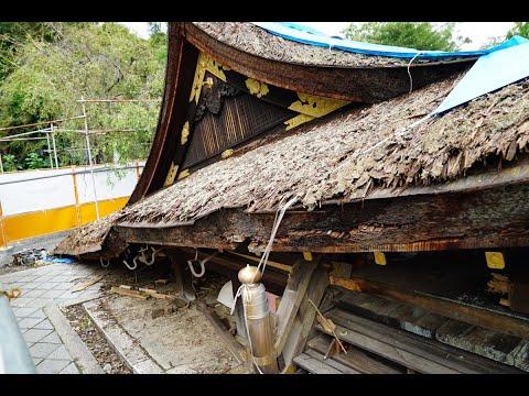 台風21号からまもなく2週間 支援を待つ現場 京都・平野神社が壊滅的被害 募金始まる