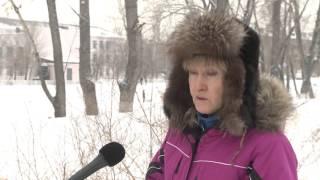 Без суда и следствия… убивают животных в Усть-Каменогорске