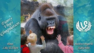 Video Animals Scaring Kids At Zoo | Animals Love To Scare Cute Kids MP3, 3GP, MP4, WEBM, AVI, FLV Agustus 2018