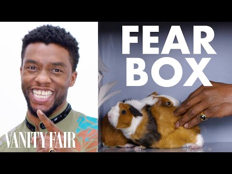 Download Black Panther Cast Touches a Chameleon, a Guinea Pig, and Other Weird Stuff | Fear Box | Vanity Fair HD Mp4 3GP Video and MP3