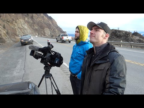 living - The Seward Highway (South of Anchorage) offers some truly breathtaking views but if you look up the side of the mountain, chances are you might see these guys! They're called Dall sheep and...