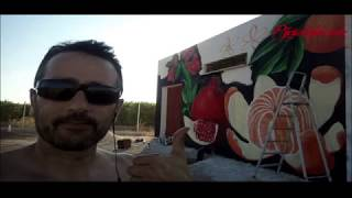 Mural cítricos