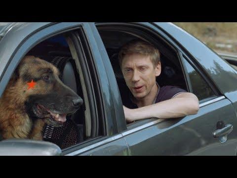 ПЕС - водитель - На троих - 5 сезон | ЮМОР IСТV - DomaVideo.Ru