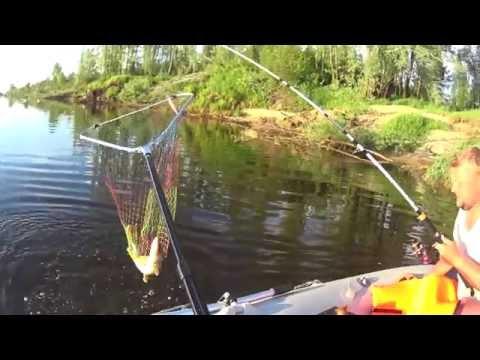 рыбная ловля на северной двине