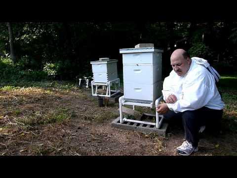NWNJBA Video Short – Keep equipment clean